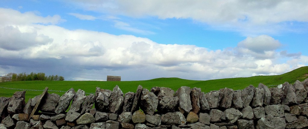 A field shelter in Eastern Cumbria - for sheep.